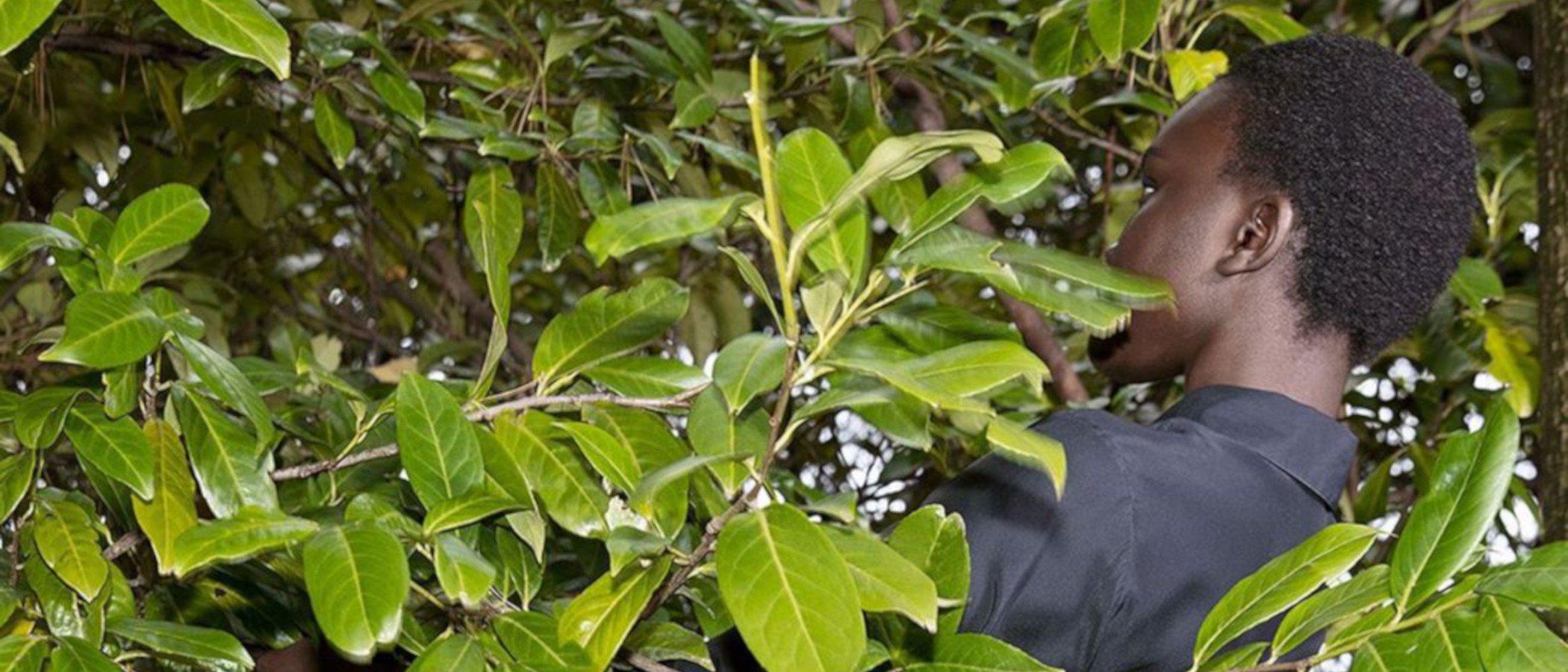 Stella McCartney presentará el primer vaquero completamente biodegradable