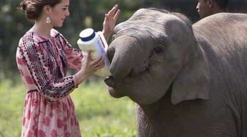 Los mejores looks de Kate Middleton en su viaje a la India y Bhutan