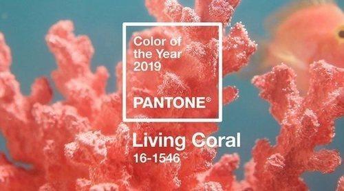 2019 ya tiene color según Pantone: el 'Living Coral'