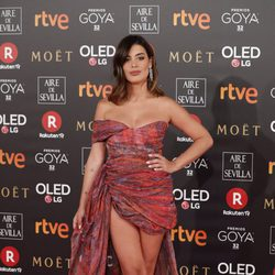 Dulceida con un vestido de ZeGarcia  en los premios Goya 2018