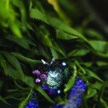 Pieza con incrustaciones de colores de la colección 'Crystal Tales' de Swarovski