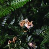 Anillos de la colección 'Crystal Tales' de Swarovski