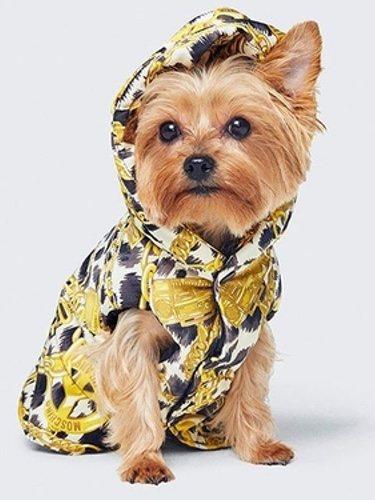 Camiseta para perro diseñada por Moschino para H&M