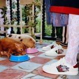 Zapatillas de la colección cápsula invierno 2019 de Gucci