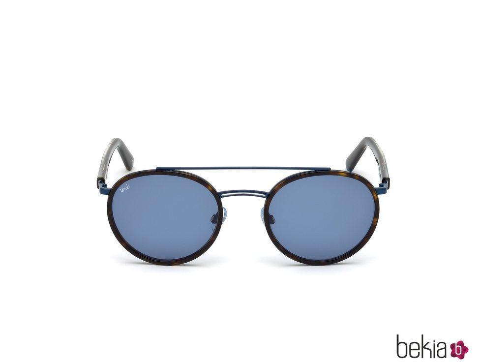 Gafas cristal azul nueva colección Marcolin