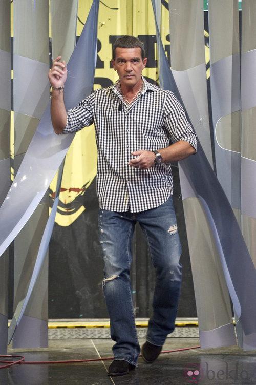Antonio Banderas con vaqueros y camisa de cuadros