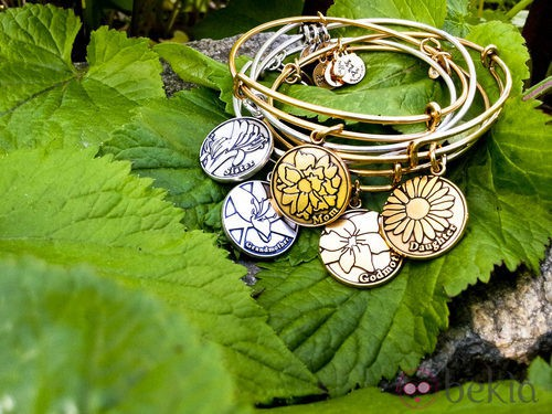 Charms con motivos familiares de Alex and Ani