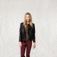 Pantalón y chaqueta de la línea Animalia de la colección otoño/invierno 2013/2014 de Springfield