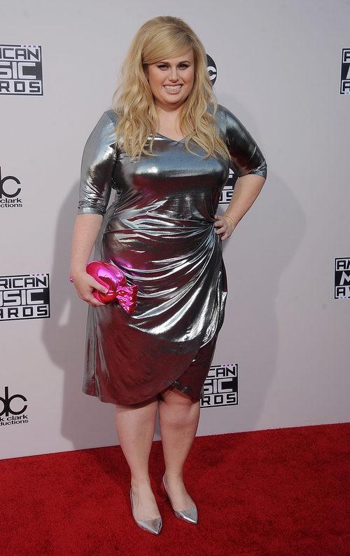 Rebel Wilson con vestido plateado en los American Music Awards 2015