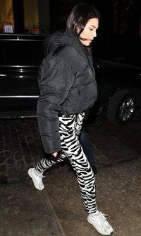 Kendall Jenner de animal print